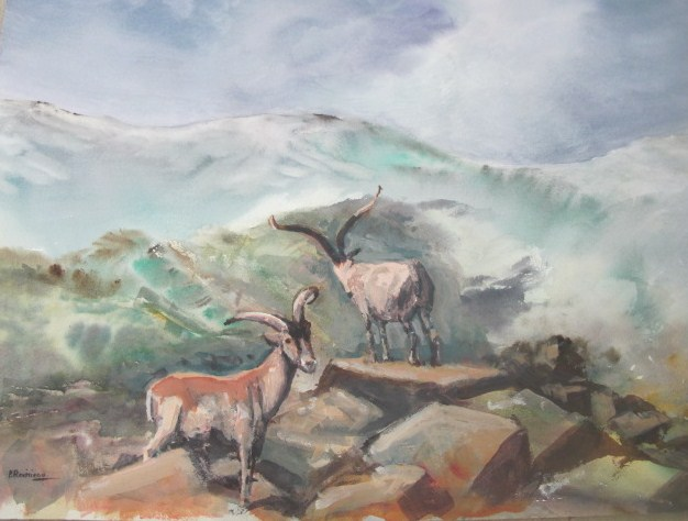 2 Cabras en los Chorreones Acuarela
